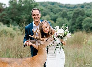 最新影樓資訊新聞-來自森林使者的祝福 蹭婚紗照的小鹿