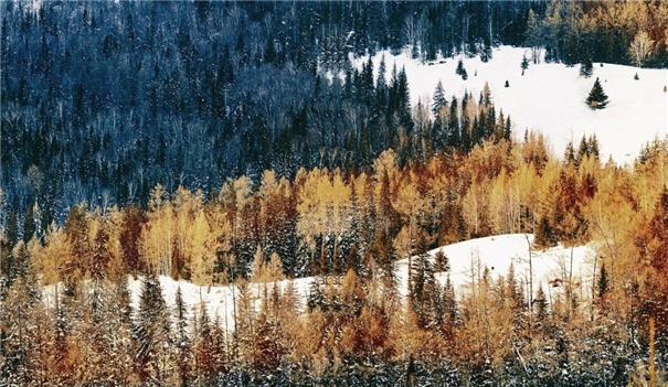今天,这样拍雪景人像才最美!