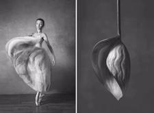 """最新影樓資訊新聞-她用攝影作品詮釋了什么是""""美人如花舞娉婷"""""""