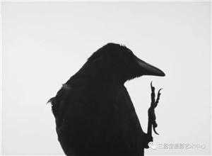 最新影楼资讯新闻-写真黄金一代——日本摄影大师五人展