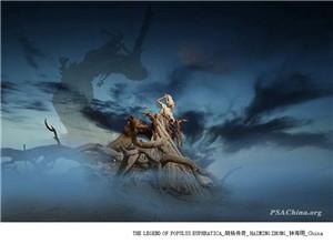 【PSAC国际影赛】2020年第7届克罗地亚DFA国际摄影大赛征稿启事