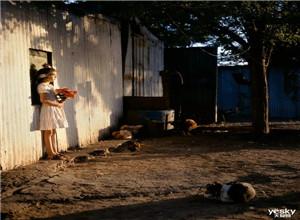 最新影楼资讯新闻-【灰】玛格南摄影师Alessandra Sanguinetti大师工作坊&公开课招募中!