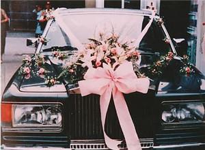 最新影楼资讯新闻-户外婚礼、婚礼专车定制服务,或将成未来流行趋势
