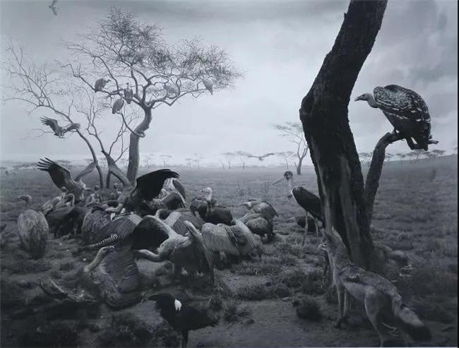 他是亚洲身价最高的日本摄影师,却自称来自宋朝!
