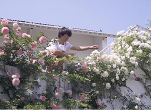 """最新影樓資訊新聞-現實版《向往的生活》:80后攝影師四年打造出""""全世界想要的院子"""""""